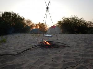 Sonnenuntergang in den einsamen Elbauen...